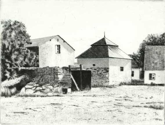 Katthammarsvik, torrnål